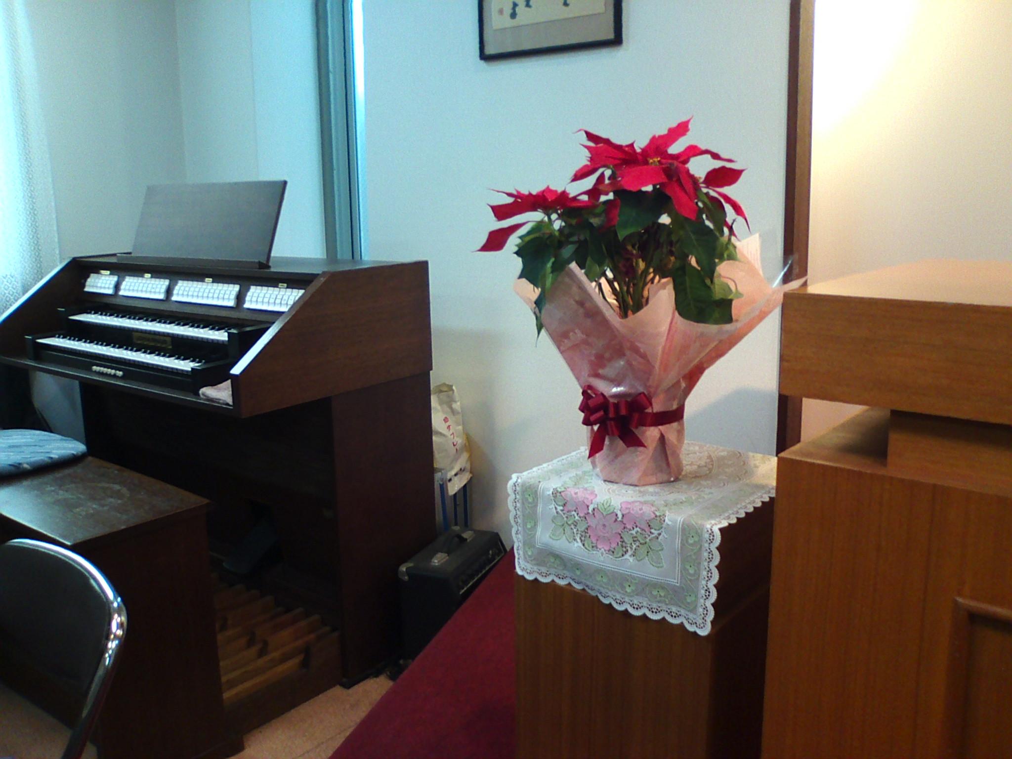 今日の会堂の花